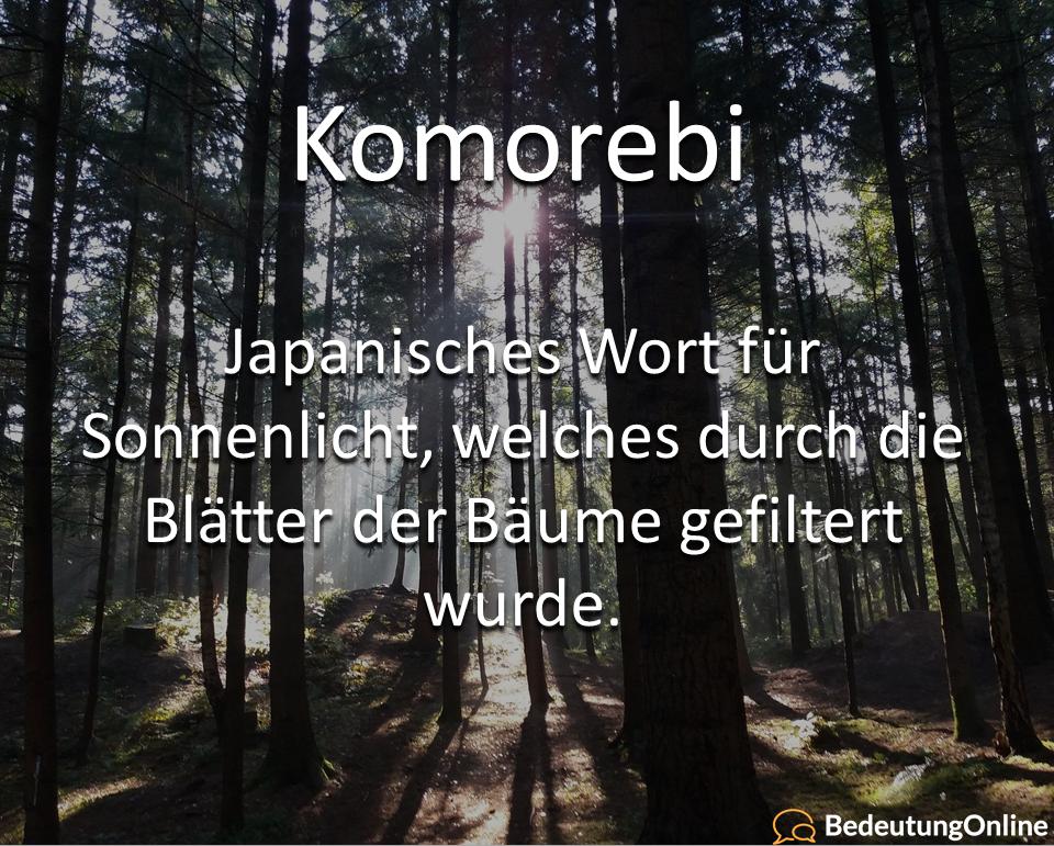 Komorebi – Was ist das? Wie entsteht das SonnenLicht?