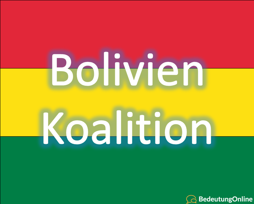 Bolivien Koalition