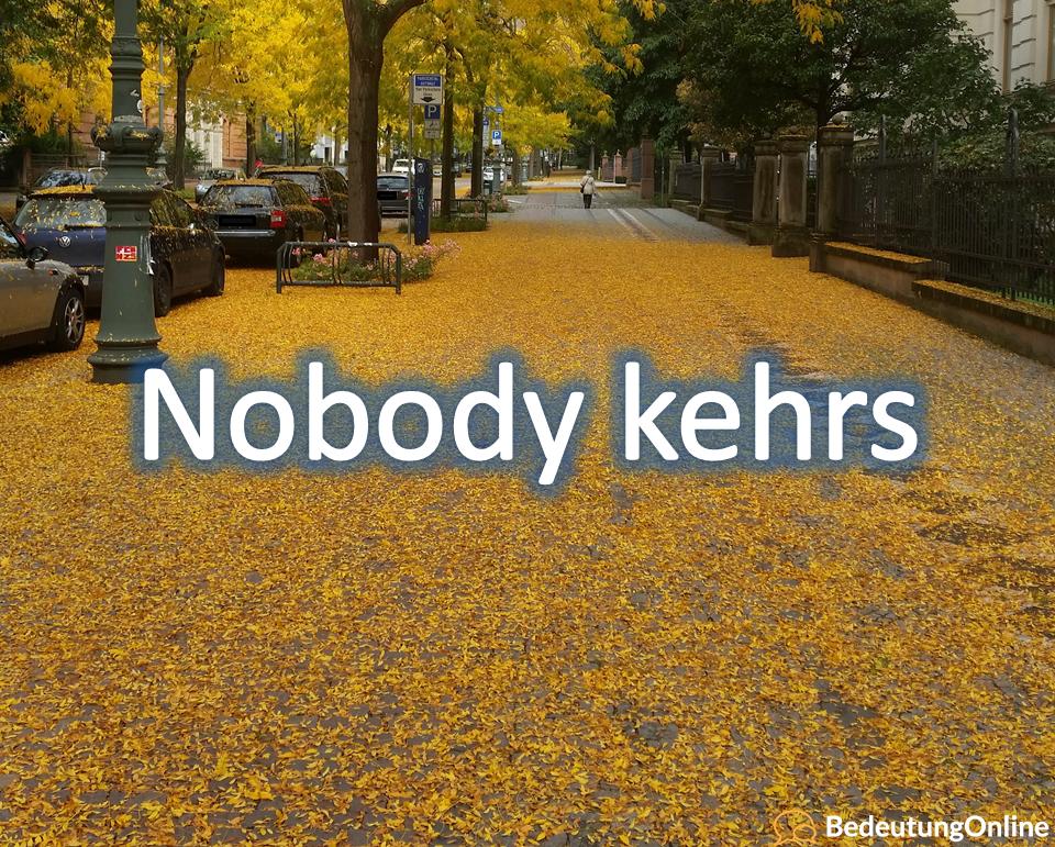 Nobody kehrs