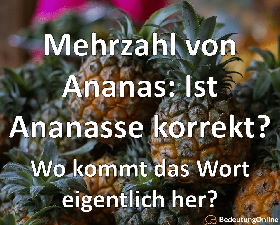 Ananas Mehrzahl Plural Wortherkunft Bedeutung Definition