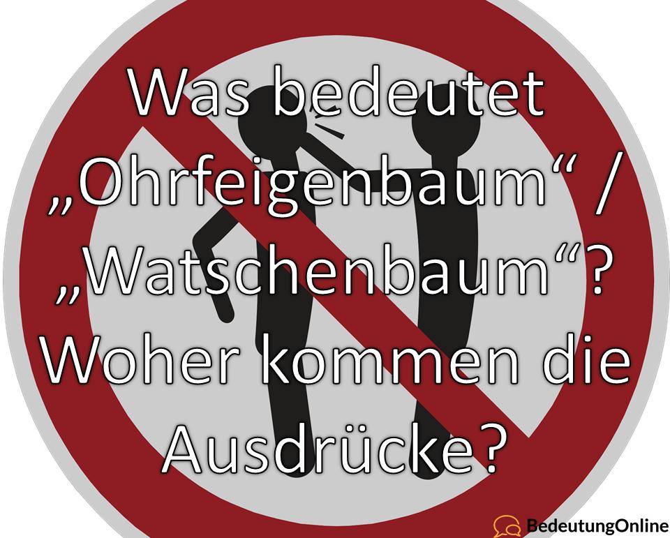 """Was bedeutet """"Am Ohrfeigenbaum rütteln / schütteln"""", """"Watschenbaum""""? Bedeutung, Definition und Wortherkunft erklären"""