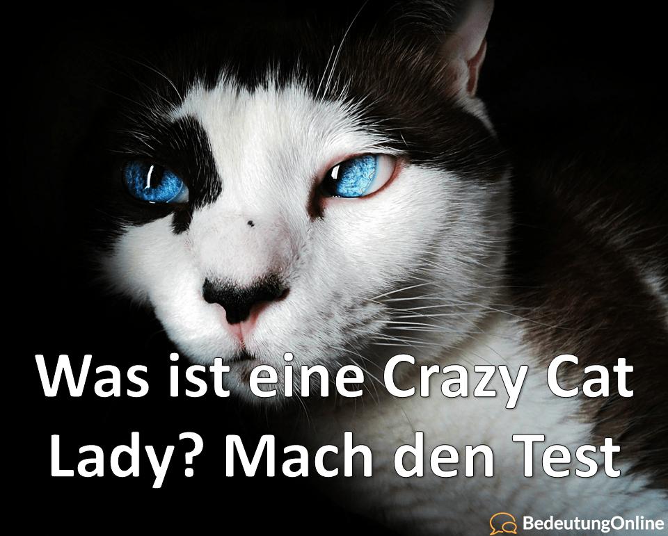 Was ist eine Crazy Cat Lady / verrückte Katzenfrau? Bedeutung, Definition, Test