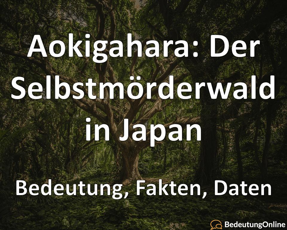 Aokigahara: Der Selbstmordwald in Japan – Bedeutung, Fakten, Daten
