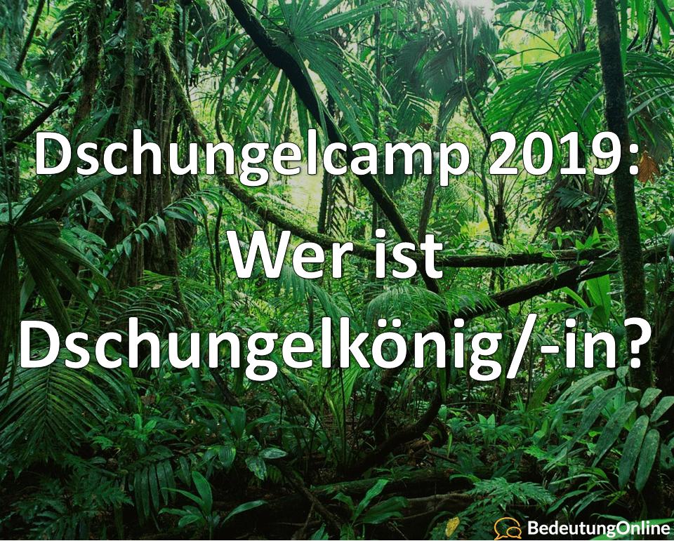 Dschungelcamp 2019 dschungelkönigin ibes