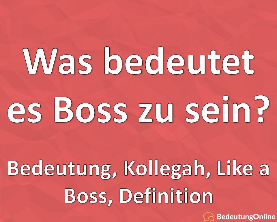 Was bedeutet es sein eigener Boss zu sein? Bedeutung, Kollegah, Like a Boss, Definition
