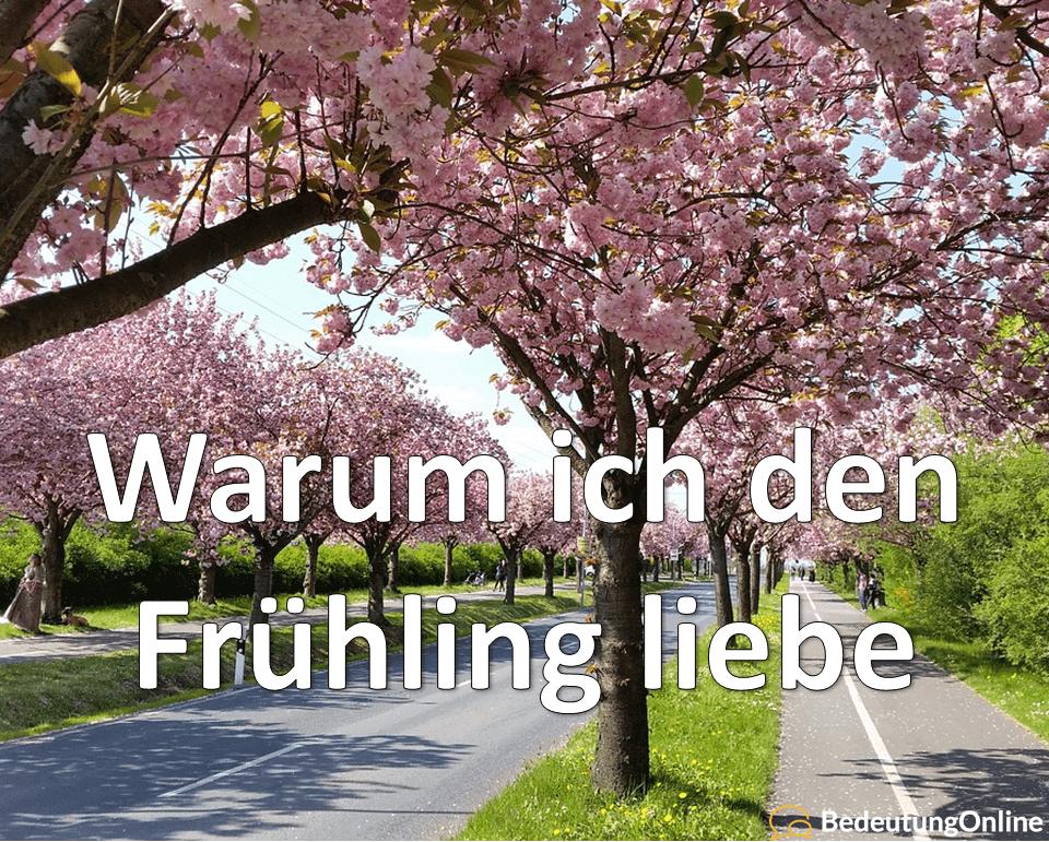 Frühlingsgefühle: 16 Gründe, warum ich den Frühling liebe