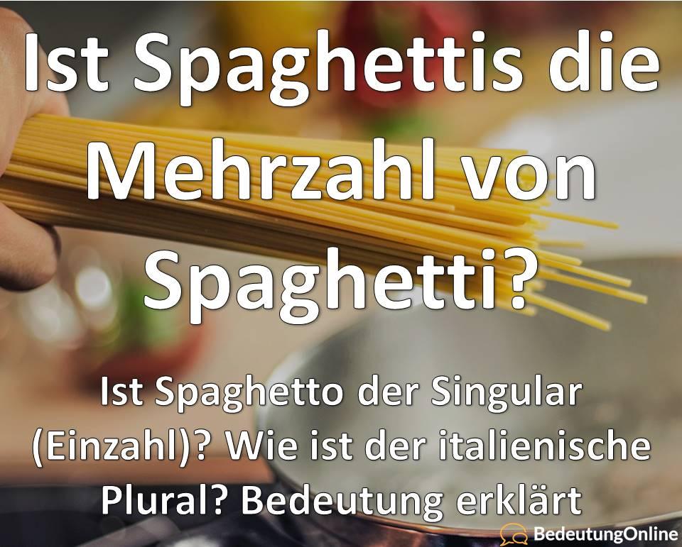 Spaghetti Spaghettis Mehrzahl Plural, Singular italeinische Einzahl Spaghetto, Bedeutung