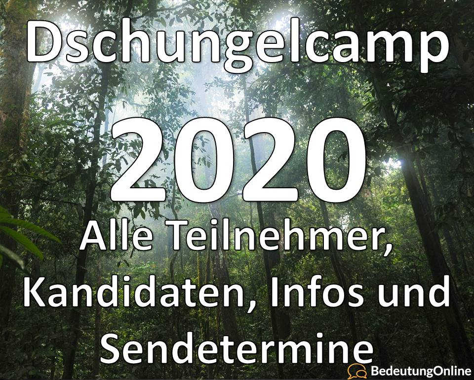 Ich Bin Ein Star 2020 Tv Now Dschungelcamp 2020