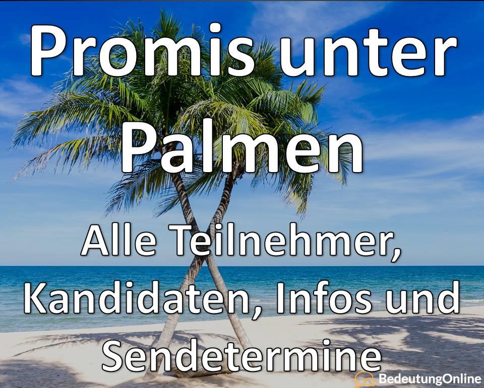 Promis unter Palmen 2020: Teilnehmer, Kandidaten und Sendetermine