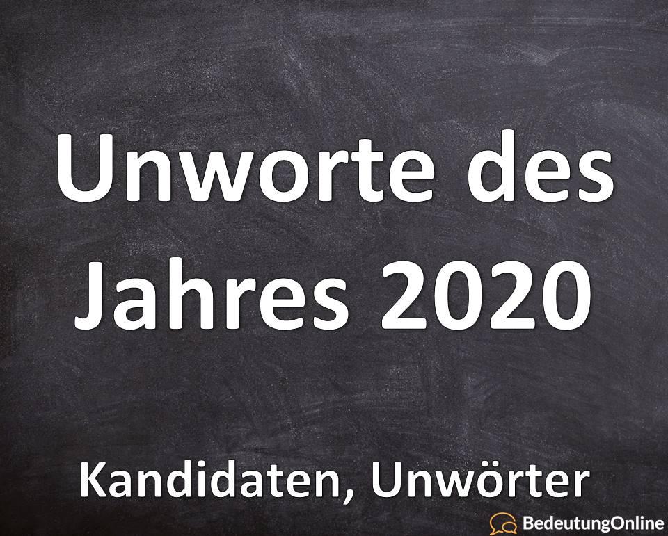 Unwort des Jahres 2020: Kandidaten, Unwörter