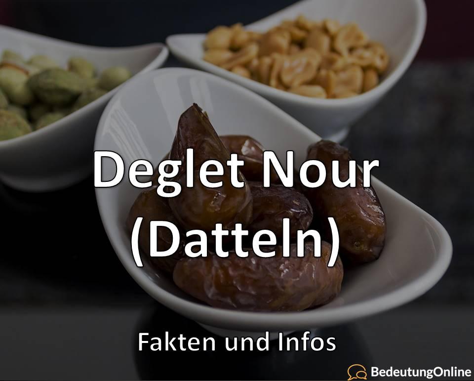 Deglet Nour (Datteln): Fakten und Infos