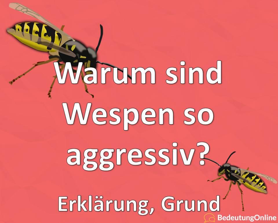 Warum sind Wespen so aggressiv? Erklärung, Grund