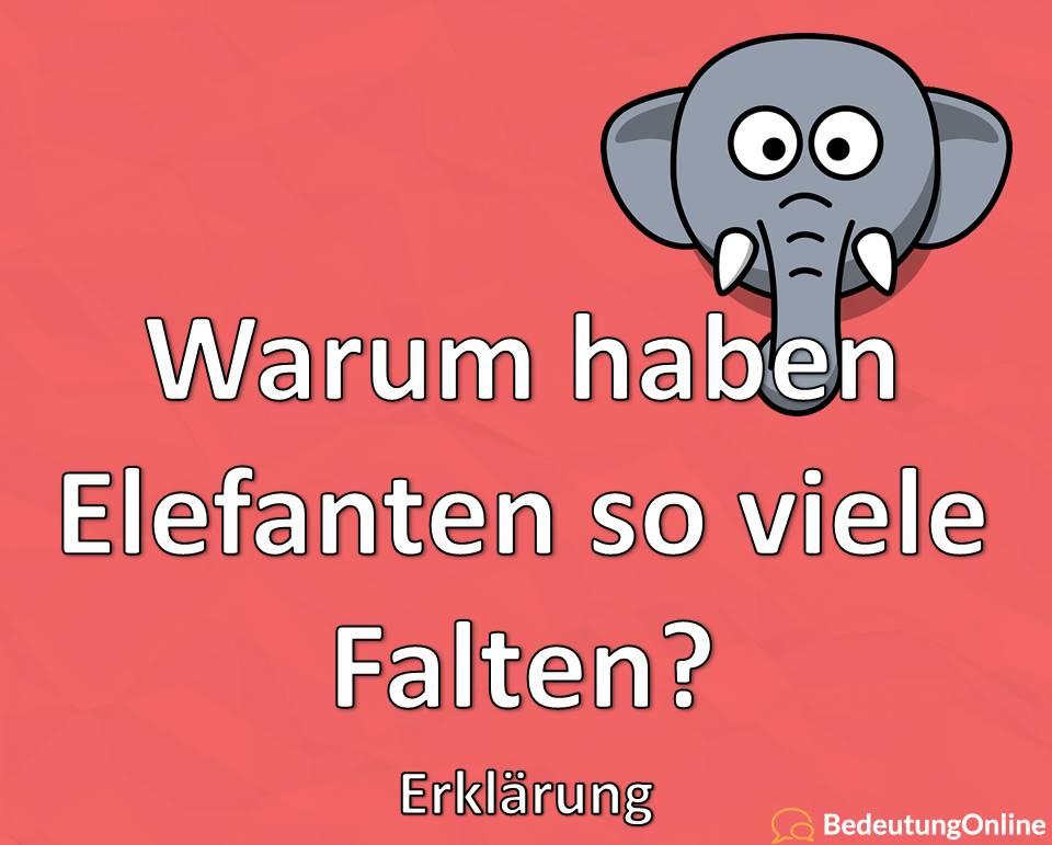 Warum haben Elefanten so viele Falten? Erklärung