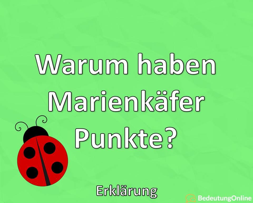 Warum haben Marienkäfer Punkte? Erklärung