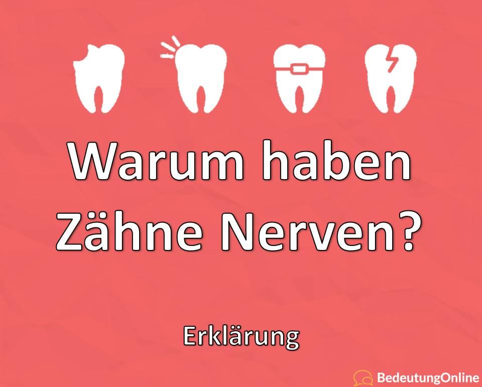Warum haben Zähne Nerven, Erklärung