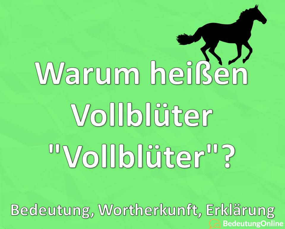"""Warum heißen Vollblüter """"Vollblüter""""? Bedeutung, Wortherkunft, Erklärung"""
