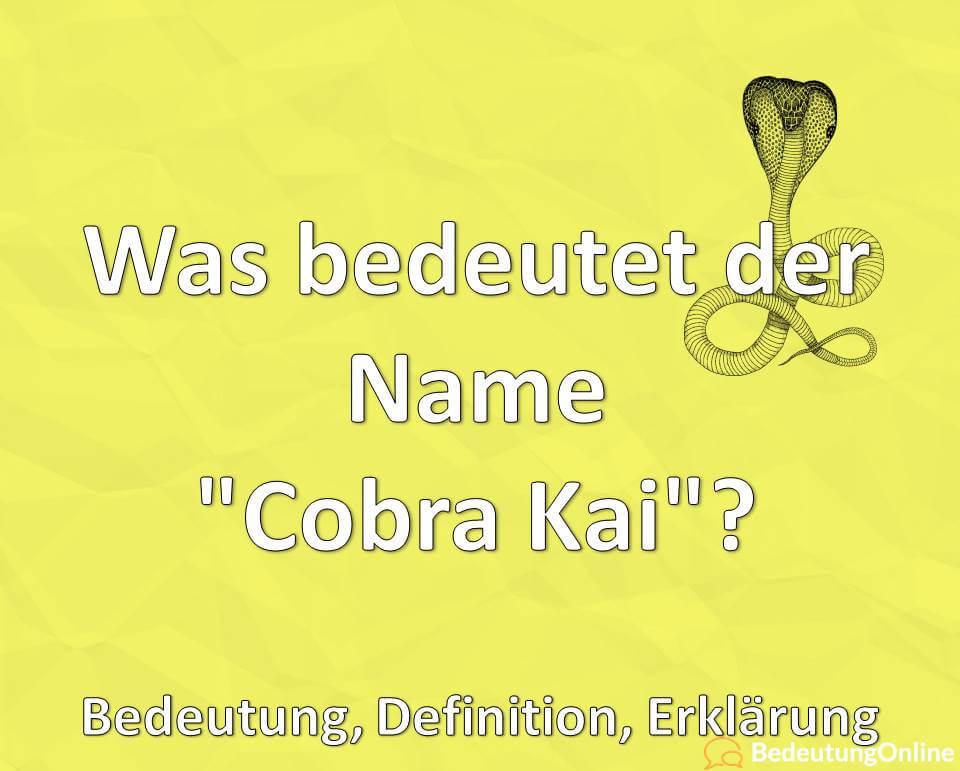 Was bedeutet der Name Cobra Kai, Bedeutung, Definition, Erklärung