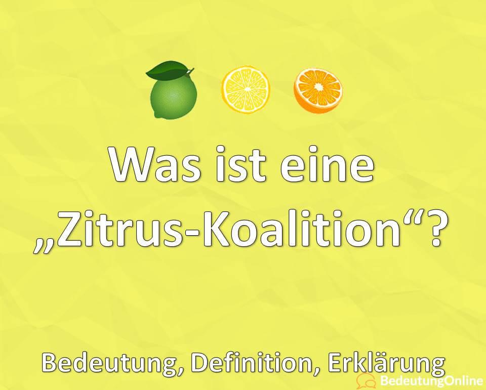 Zitrus Koalition, Zitruskoalition, Bedeutung, Definition, Erklärung